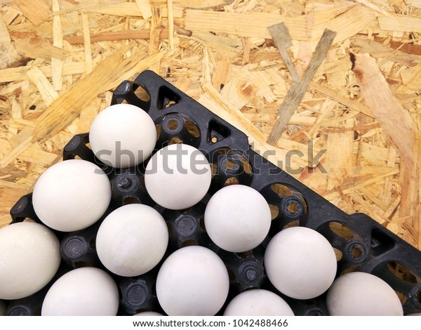 The arrangement of many salted eggs in plastic egg pan on lumber from waste wood background in food preservation concept