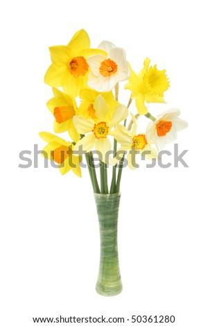 Arrangement Mixed Daffodils Vase Stock Photo Edit Now 50361280
