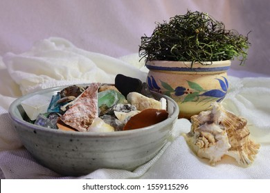 Arrangement of Moss, a Shell, Found Objects, and Pottery