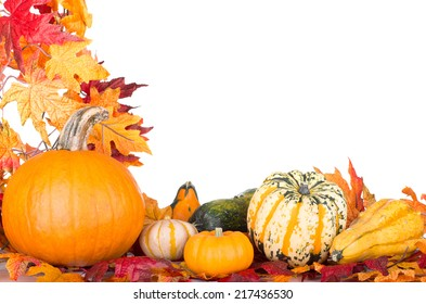 Arrangement of a pumpkin and gourds with an autumn leaf border on a white background with copy space