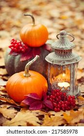 Arrangement with pumpkins and lantern