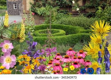 arrangement; remedies, medicinal plant,