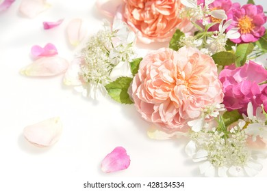 arrangement of roses on white background