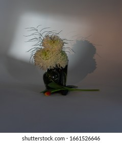 an arrangement of white chrysanthemums and a tulip using artistic gobo lighting