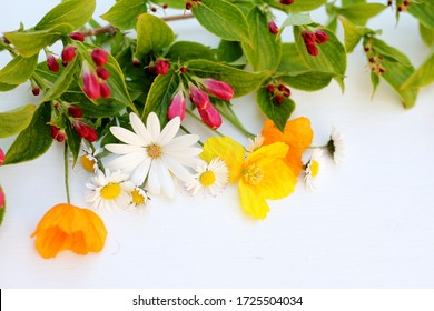 An arrangement of wild cut flowers on a white wooden background. Yellow and orange welsh poppies, daisies and spring blossom make a natural image.