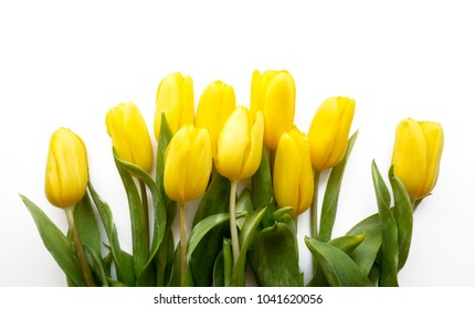 An arrangement of yellow tulips on light background.