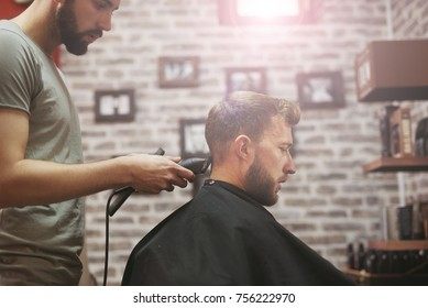 Arranging male hair in the hairdresser's salon.