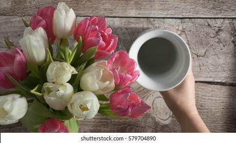 Arranging white and pink tulips into a white vase rustic wooden background