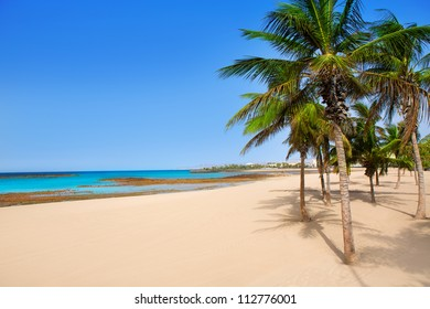 Arrecife Lanzarote Playa Reducto beach tropical palm trees at Canary Islands