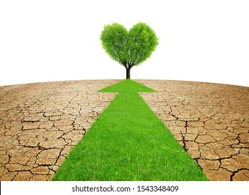 Arrow from green grass through dry country with cracked soil. Concept of change climate or global warming.