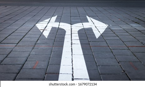 Arrow symbol on forked road. Make choice which way to go. Directional traffic arrow sign on street. Decision concept.