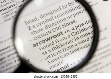 Arrowroot word or phrase in a dictionary.