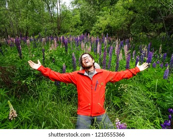 Arrowtown / New Zealand - 12 21 2016 young man amazed by blossoming lupin flowers in green field