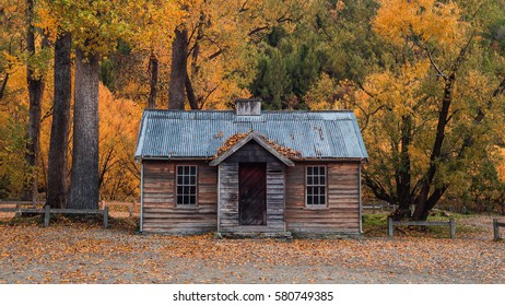 Arrowtown shed in colorful autumn forest