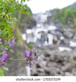 Arsen Altay Russia Priroda Fotolia Foto