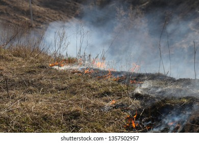 arson of dry grass