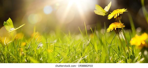 Kunstabstrakter Frühlingshintergrund oder Sommerhintergrund mit frischem Gras