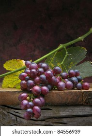 Art bunch of purple grapes with leaves on dark background