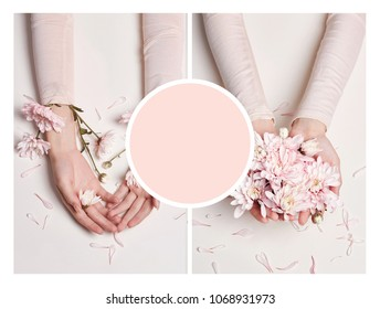 Art collage mockup summer hand with flower on table, set with space for littering text, copyspace. Beauty skincare hand beautifull woman. Spa aromatherapy. Creative beauty photo girls sitting at table