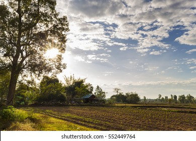 The Art Countryside landscape clear cloud and sky