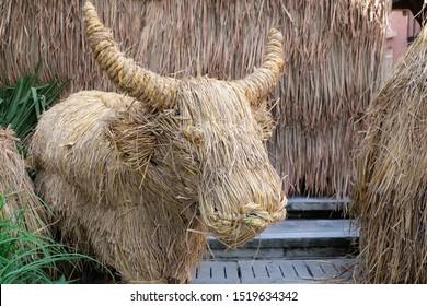 Art of dry straw.Buffalo.Straw, dry straw, straw background.