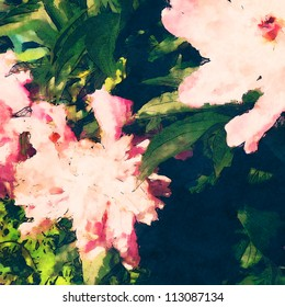 art floral colorful watercolor background with light pink peonies