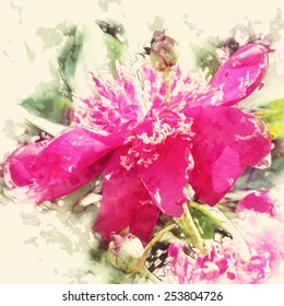 art grunge floral vintage watercolor background with pink and purple peonies toned retro instagram filter effect