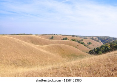 Art of nature. Dunes in Deliblato Sands in Banat, Vojvodina, Serbia. Deliblato Sands  is a large sand area covering around 300 km² of scope. It is located in southern Banat, near the Danube river.