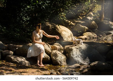 Art portrait a beautiful girl,in nature forest light,fashion style of young pretty beautiful woman play horse doll in rock