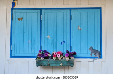 Art window with blue wooden shutters and flower pot with flowers gerber, design element or background, vintage decor