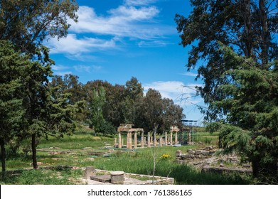 Artemis temple in Attica Greece. Artemis was the goddess of chastity, virginity, the hunt, the moon and the natural environment.