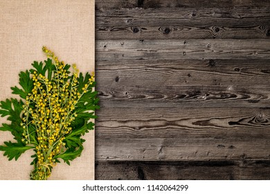 Artemisia absinthium ( absinthe, absinthium, absinthe wormwood, wormwood ) flowers and leaves on linen cloth napkin and wooden background,  close up, copy space, text place