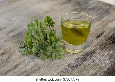 Artemisia absinthium drink,absinthium drink, absinthe wormwood drink, wormwood drink