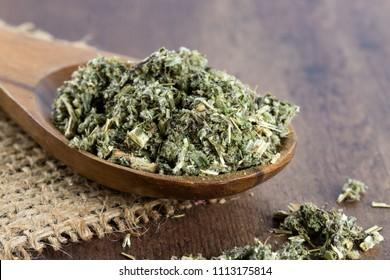 Artemisia vulgaris on a wooden spoon