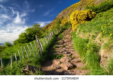 Arthur's Seat - hill in city Edinburgh, Scotland.  Yellow flowers on the mountains. Empty hiking trail