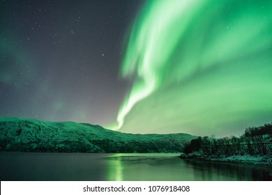 The artic and the nothern lights