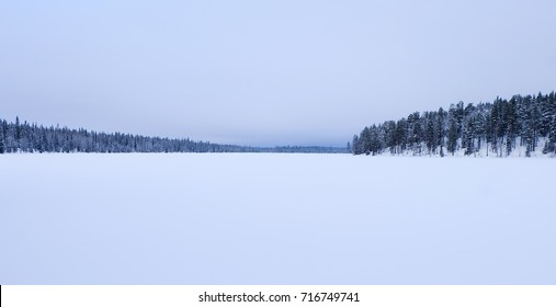 Artic winter in the snow of lapland