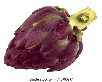 artichoke  isolated on white background closeup shot