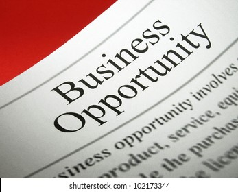 Article about business opportunities