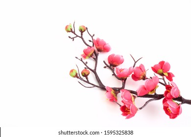 Artificial branch of blossoming cherry with bright pink flowers, isolated on white background, copy space for text