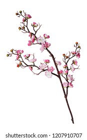 Artificial branch of cherry blossoms with pink flowers, isolated on white background