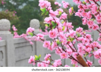 Artificial cherry blossoms decorated the streets blurred background.