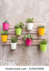 Artificial colourful flower pots hanging on a wall