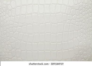 Artificial crocodile leather texture white