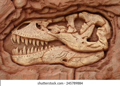 Fossil Dinosaur Bones Images, Stock Photos & Vectors