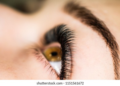 Artificial eyelash extensions in the master of eyelash extensions in the beauty salon, medical tweezers and special glue for the coupling of artificial eyelashes with real