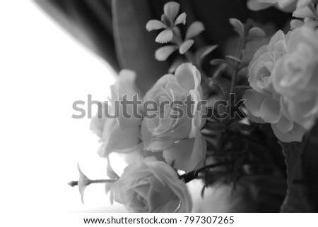 Artificial flowers window black white stock photo edit now artificial flowers in the window black and white mightylinksfo