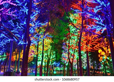 Artificial forest in Shah Alam,Malaysia