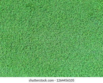 Artificial grass background with copy space