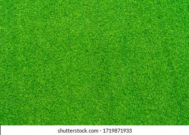 Artificial grass background, Artificial grass texture.